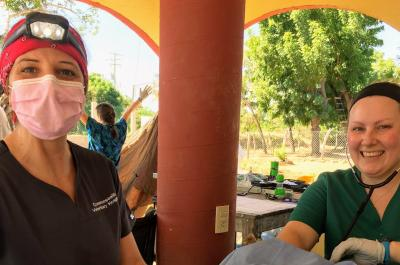 The Mazunte Project: A Veterinary Adventure to Mexico and Back